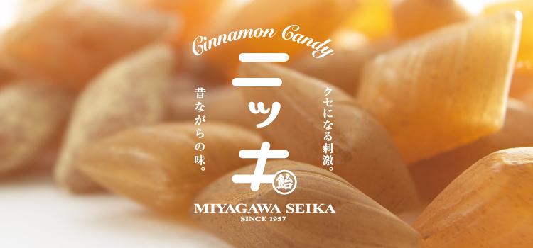 宮川製菓 ニッキ飴