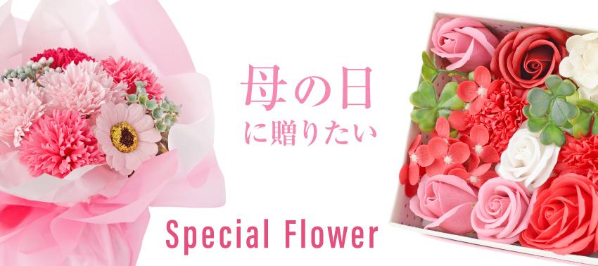 母の日に贈りたい Special Flower特集 イメージ