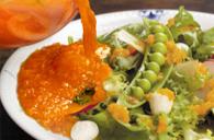 新鮮野菜をすりおろした糸島野菜を食べる生ドレッシング