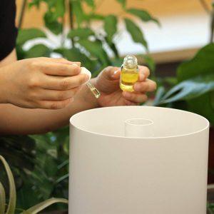 面倒くさがり屋さんにお薦めGreen Tea Lab Mist加湿器